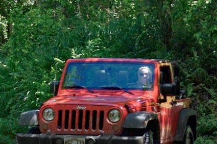 A 2 door Jeep Wrangler deep in the jungles of Hawaii